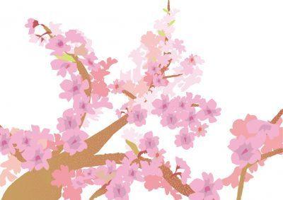 free-background39877-1